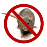 Rodenticide (1)